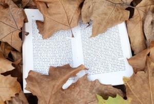 Livre feuilles automne3